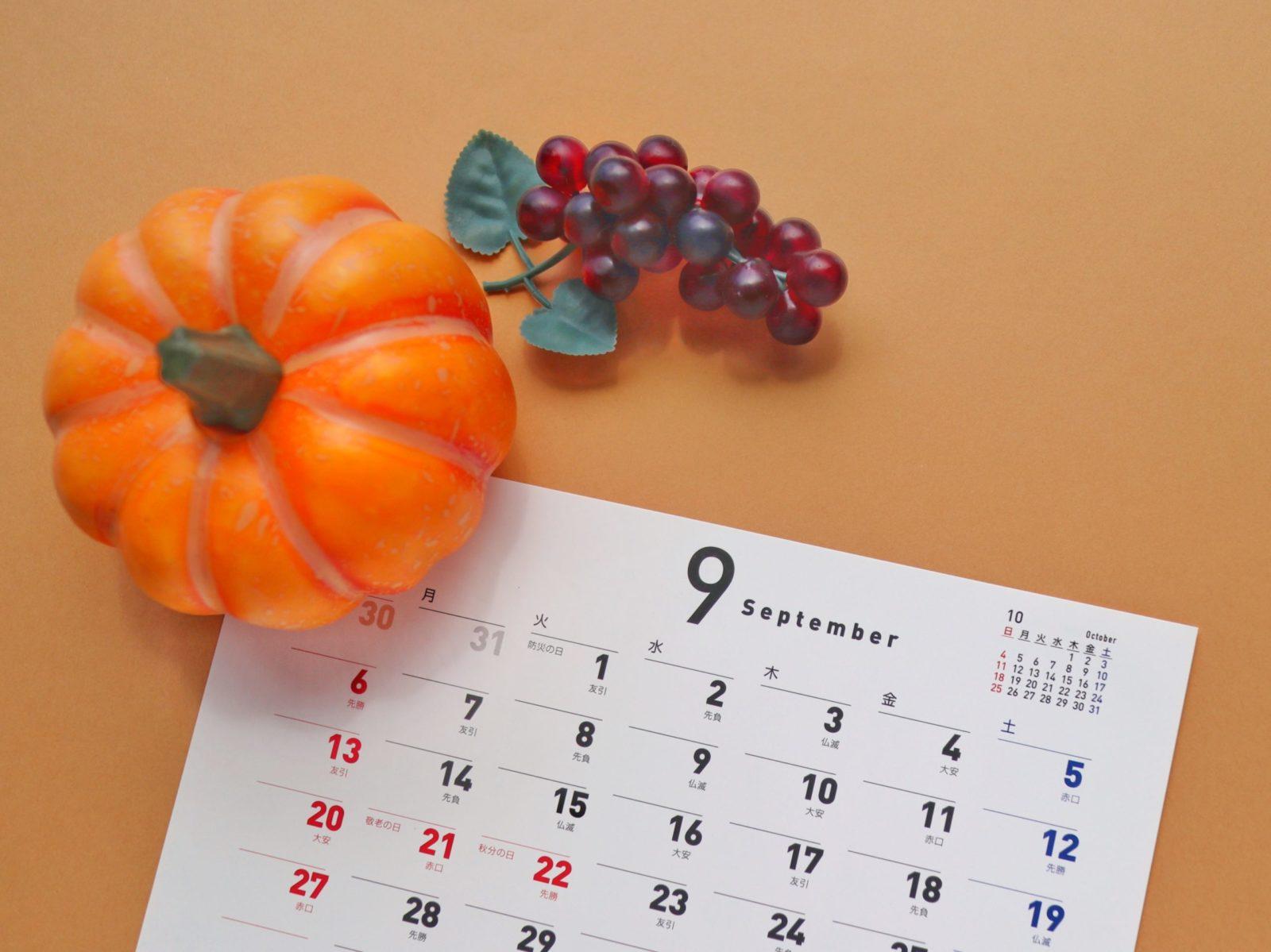 「脱毛の秋」9月限定!お得なご紹介特典🍂